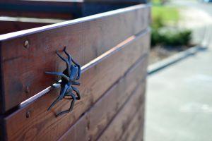 kovaný pavouk